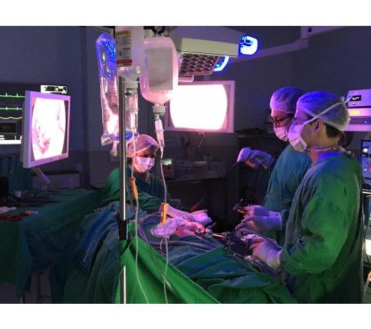 Médicos do CITRADI em imersão em Santa Catarina
